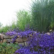 natursteinmauer002