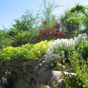 natursteinmauer004